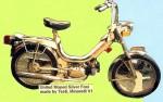 1977 Silver Foxi